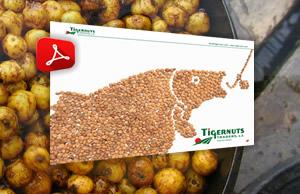 Carptigernuts.com