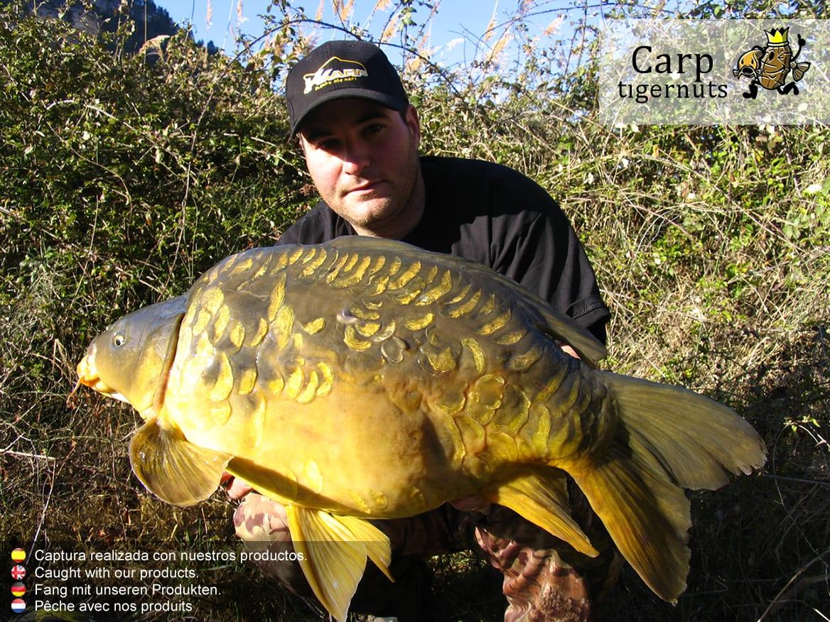 carps-caught-with-tigernuts-03