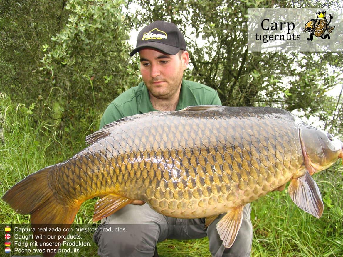 carps-caught-with-tigernuts-04