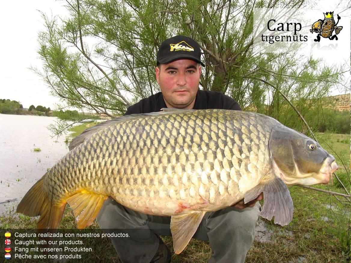 carps-caught-with-tigernuts-05