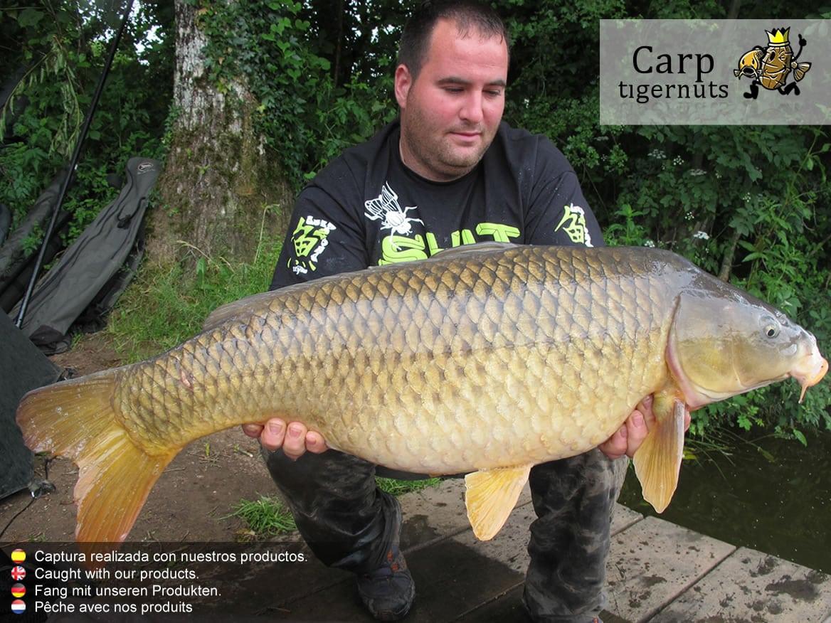 carps-caught-with-tigernuts-14